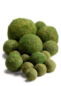 moss-ball-sphere-floral-supplies_QY97357-20_View_View